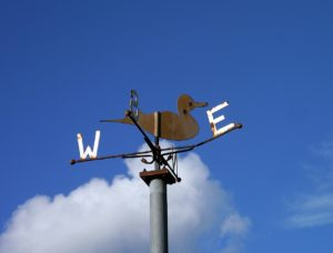 Duck weather vane